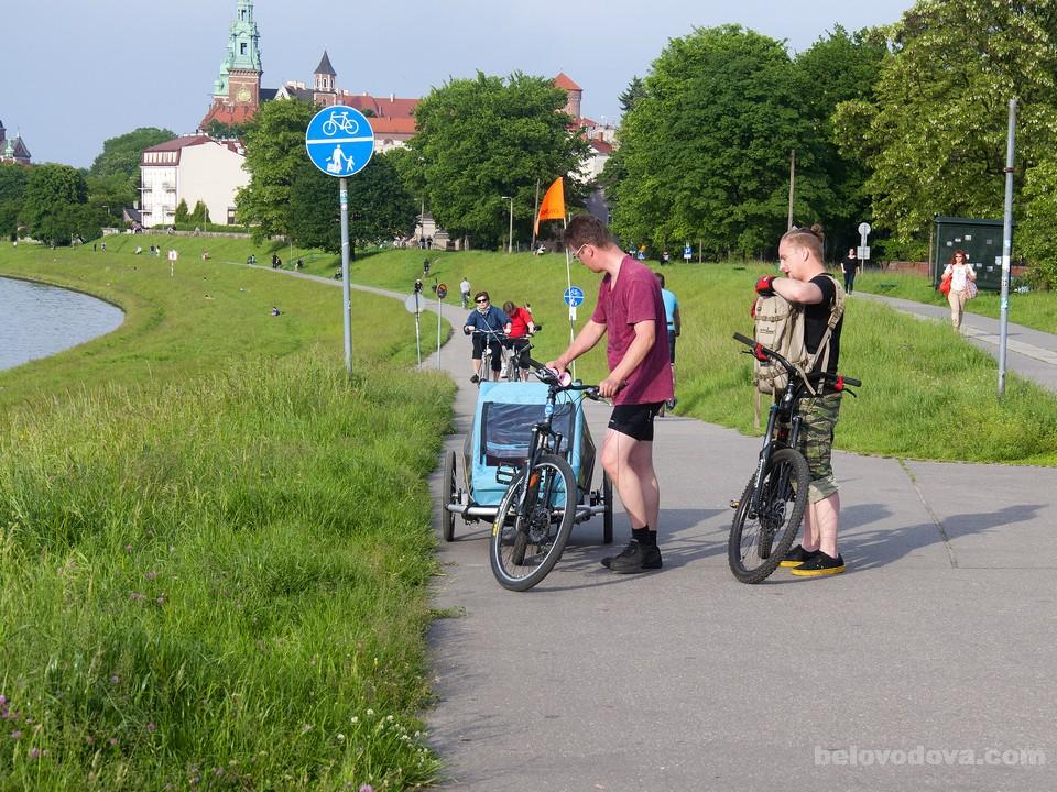 парк, велосипедисты