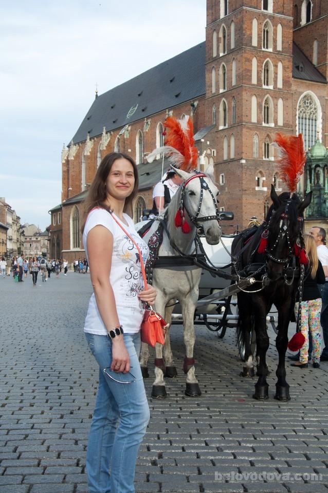 кареты с лошадьми