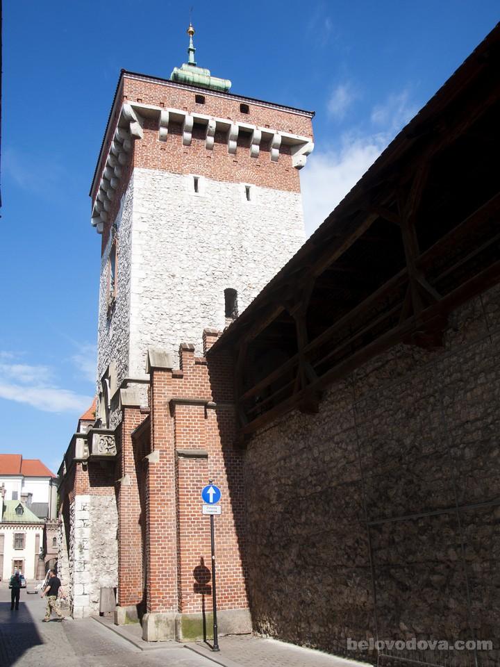 Флорентийские ворота