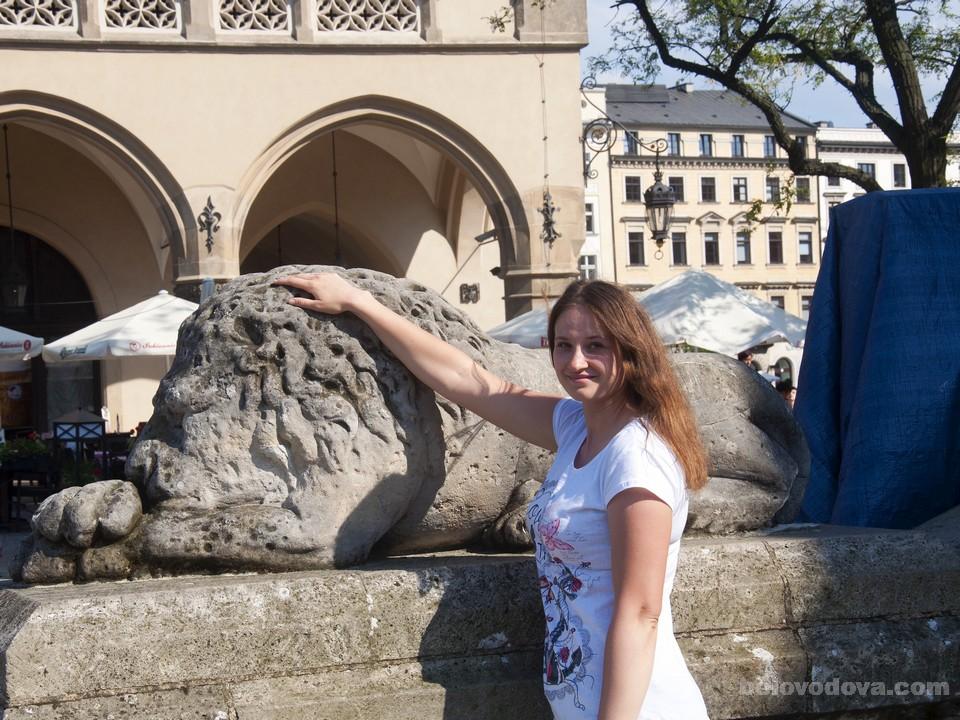 статуя Льва рядом с Краковской Ратушей